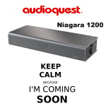 audioquest_niagara1200_audioteka